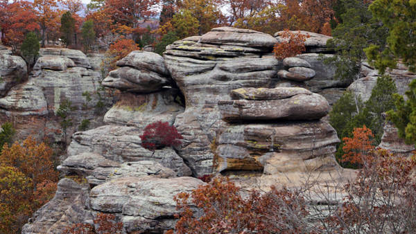 Photograph - Shawnee Forest Rock Formation by Sandy Keeton