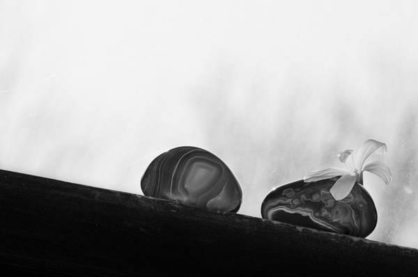 She Wall Art - Photograph - She Loves Me Not by Matthew Blum