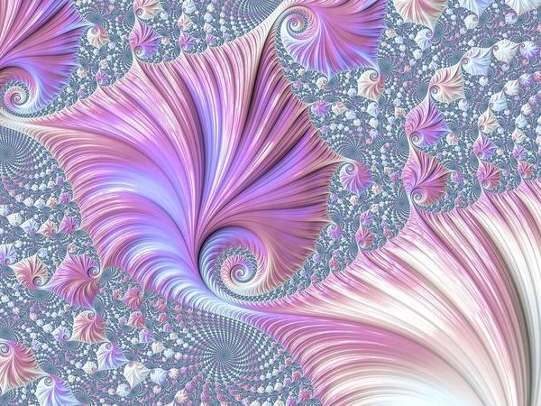 Digital Art - She Shell by Susan Maxwell Schmidt