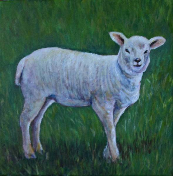 Wall Art - Painting - Sheep In A Field by Jennifer Kwon