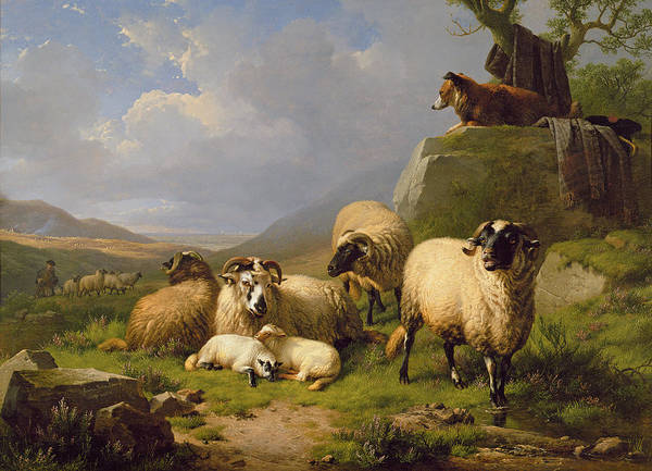 Eugene Joseph Verboeckhoven Painting - Sheep In A Landscape, 1863 by Eugene Joseph Verboeckhoven