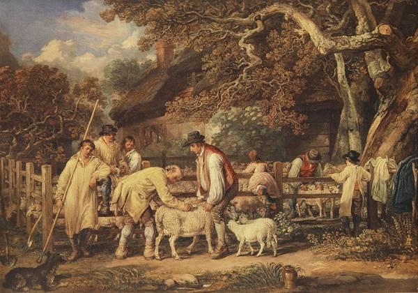Farmer Drawing - Sheep Shearing, C.1820 by James Ward