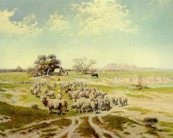 Wagon Digital Art - Sheepherding Montana by Olaf Seltzer