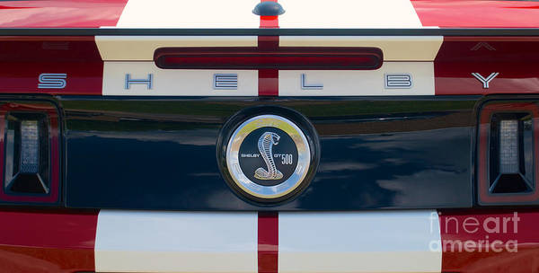 Photograph - Shelby Cobra Tailgate Emblem by Mark Dodd
