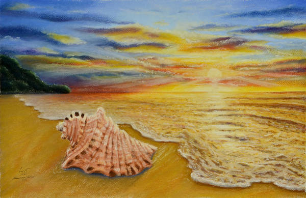 Shell At Sunset Art Print