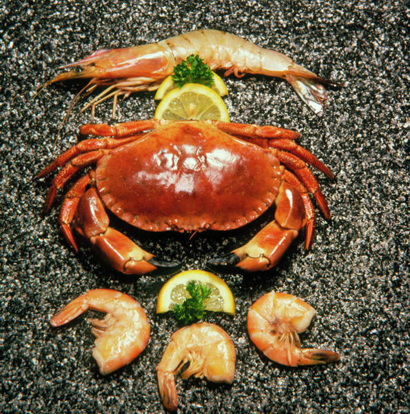 Wall Art - Photograph - Shellfish; Crab And Prawns With Lemon Garnish. by Sheila Terry/science Photo Library
