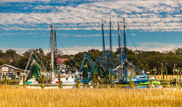 Photograph - Shem Creek Shrimp Boats Mt. Pleasant Sc by Donnie Whitaker