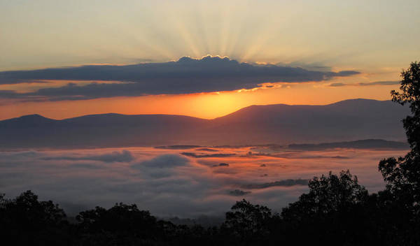 Photograph - Shenandoah Morning Sunrise Fog  by Lara Ellis