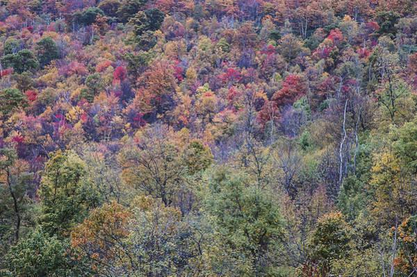 Photograph - Shenandoah National Park 2 by Lee Kirchhevel