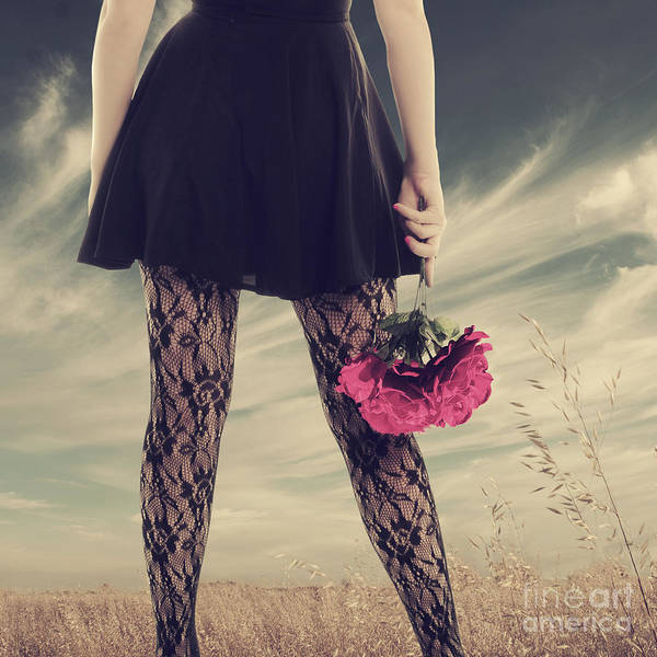 Lace Digital Art - She's Got Legs by Linda Lees
