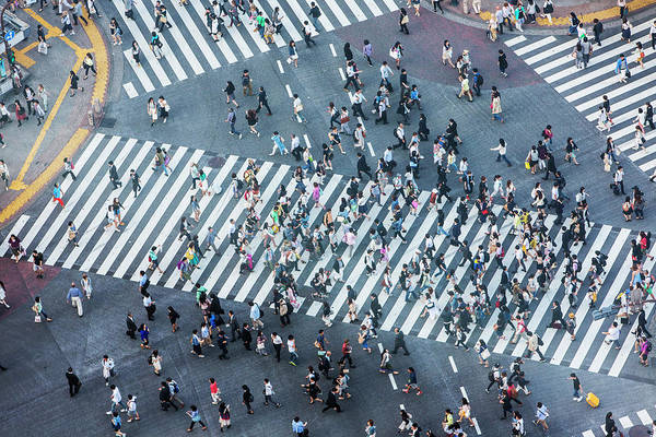 Crossroads Photograph - Shibuya Crossing Aerial by Davidf
