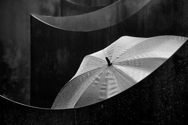 Rainy Photograph - Shielded by Marc Apers