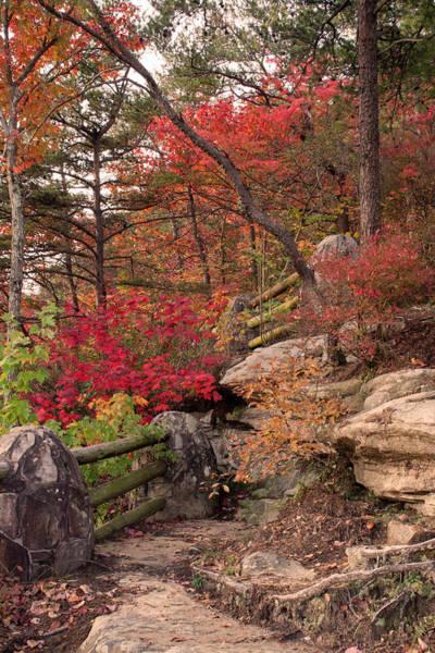 Cloudland Canyon Photograph - Shifting Colors by David Troxel