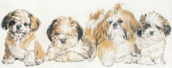 Wall Art - Mixed Media - Shih Tzu Puppies by Barbara Keith