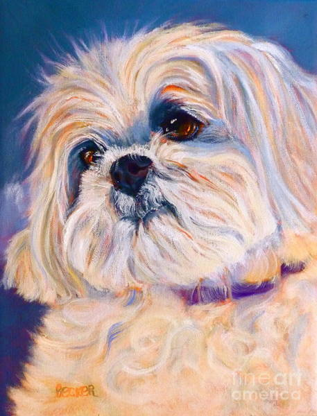 Wall Art - Painting - Shih Tzu Rescue by Susan A Becker