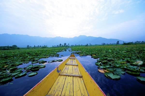 Dal Lake Photograph - Shikara Ride At Srinagar by Clicked By Aalok