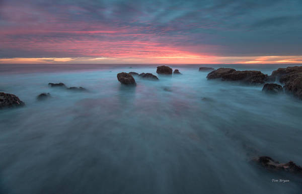 Photograph - Shimmer-cambria by Tim Bryan