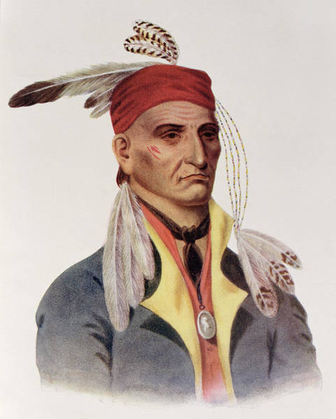 Tribe Photograph - Shin-ga-ba Wossin Or Image Stone,  A Chippeway Chief, 1826, Illustration From The Indian Tribes by James Otto Lewis