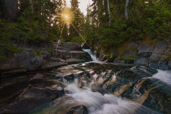 Photograph - Shining Through by Gene Garnace