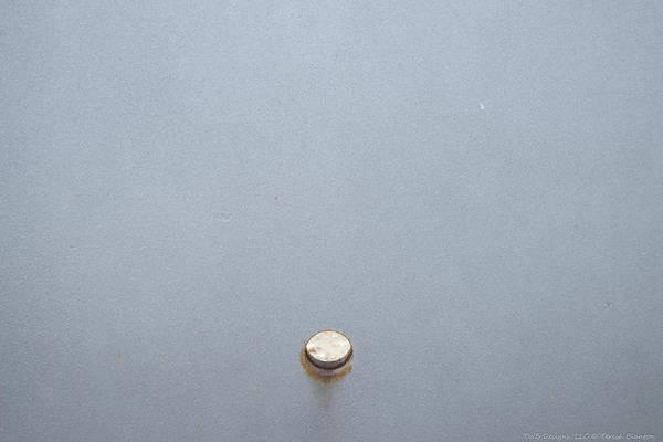 Photograph - Shiny Dot by Teresa Blanton