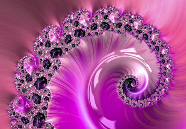 Digital Art - Shiny Pink Fractal Spiral by Matthias Hauser