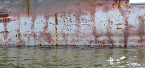 Photograph - Ship Rust 3 by Anita Burgermeister