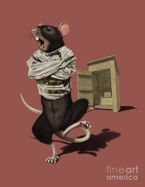 Rat Digital Art - Shithouse Colour by Rob Snow