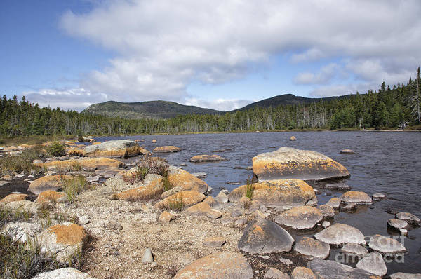 Photograph - Shoal Pond - Pemigewasset Wilderness New Hampshire Usa by Erin Paul Donovan