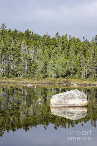 Photograph - Shoal Pond - White Mountains New Hampshire by Erin Paul Donovan