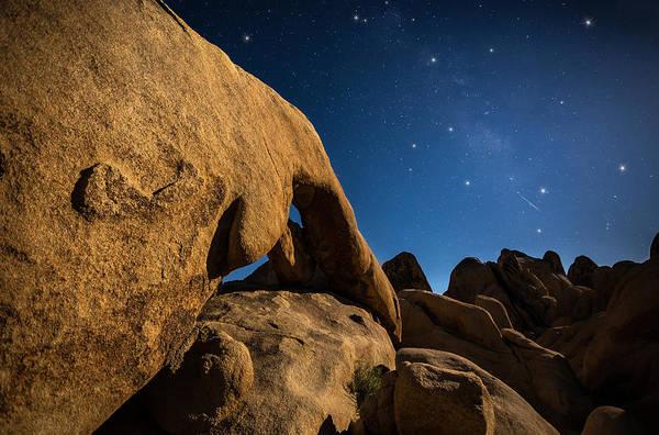 Photograph - Shooting Star by Tassanee Angiolillo