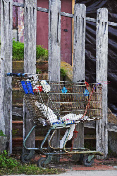 Photograph - Shopping Cart by Peter Tellone
