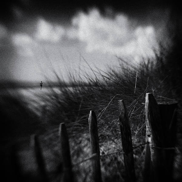 Fences Wall Art - Photograph - Shore Runner by Luc Vangindertael (lagrange)