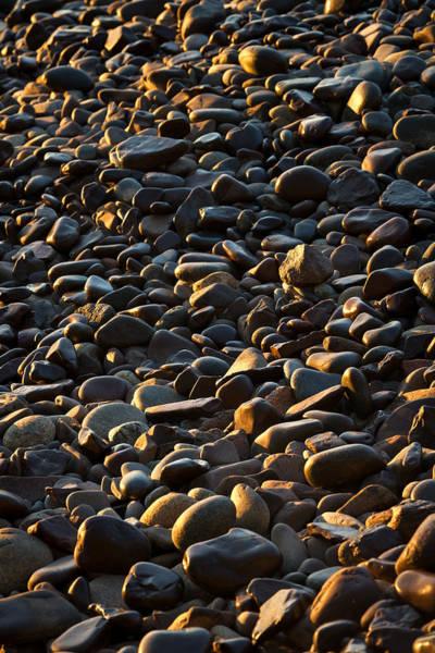 Wall Art - Photograph - Shore Stones by Steve Gadomski