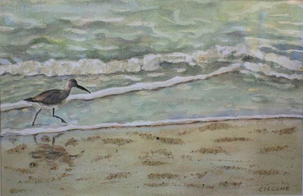 Painting - Shorebird by Jill Ciccone Pike