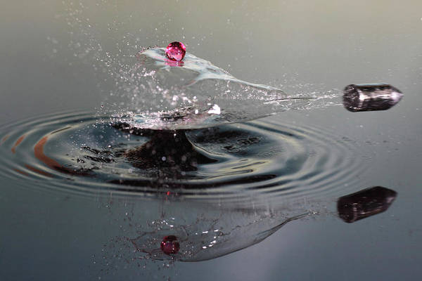 Ripples Photograph - Shot Of A Drop Shot by Lex Augusteijn