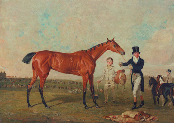 Chestnut Horse Painting - Shoveller Held By Her Trainer Will Chifney by Benjamin Marshall