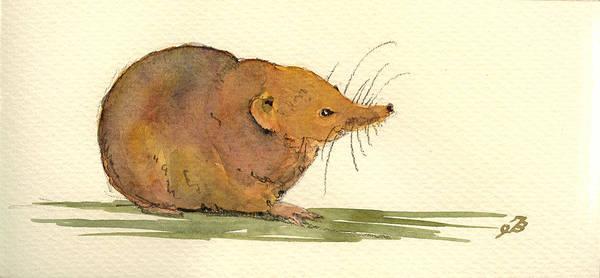 Rodent Wall Art - Painting - Shrew by Juan  Bosco