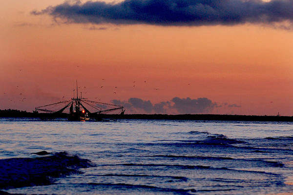 Photograph - Shrimp Boat by Peter DeFina