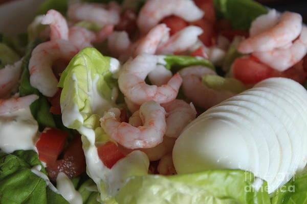 Salad Dressing Photograph - Shrimp Salad by Terri Thompson