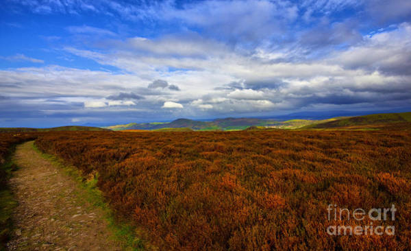 Church Stretton Wall Art - Photograph - Shropshire Hills by Darren Burroughs