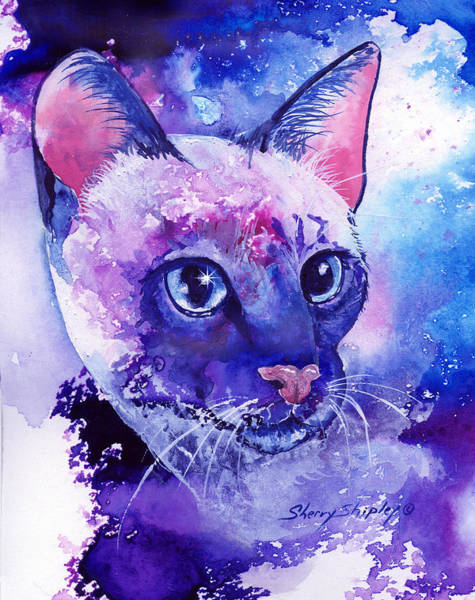 Painting - Siamese Fantasy by Sherry Shipley