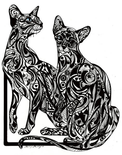 Drawing - Siamese Twin Tangle by Sherry Shipley