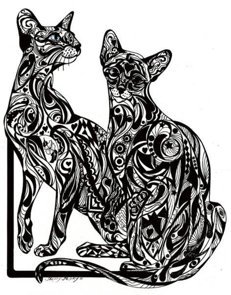 Drawing - Siamese Twin Tangle by Sherry Shipley