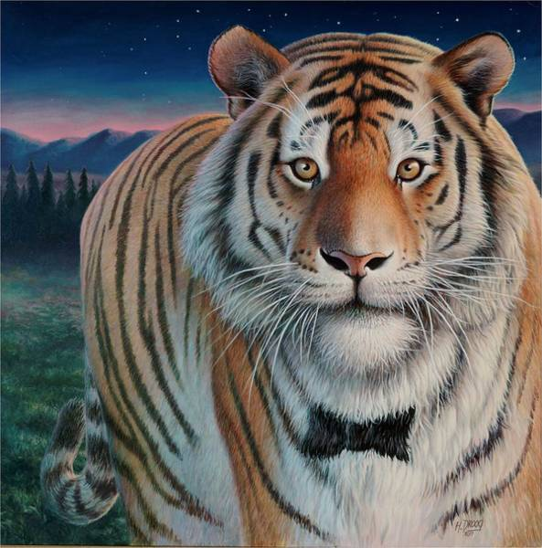 Painting - Zoofari Poster The Siberian Tiger by Hans Droog
