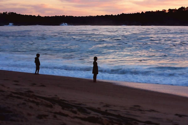 Carmel By The Sea Photograph - Siblings by Art Block Collections