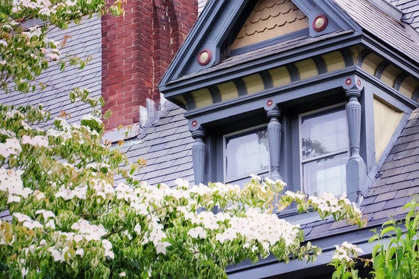 Side Window And Dogwoods Art Print