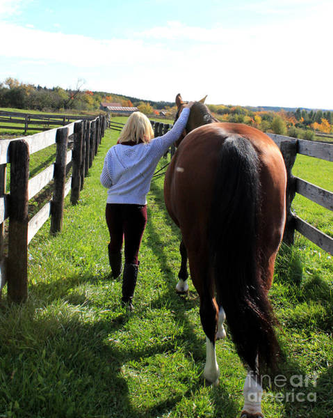 Photograph - Sidney Hannah 12 by Life With Horses