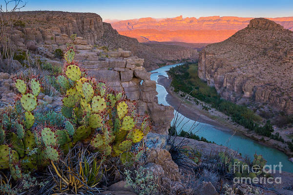 Prickly Pear Photograph - Sierra Del Carmen And The Rio Grande by Inge Johnsson