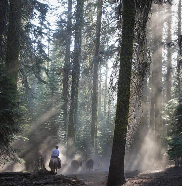 Photograph - Sierra Dust by Diane Bohna