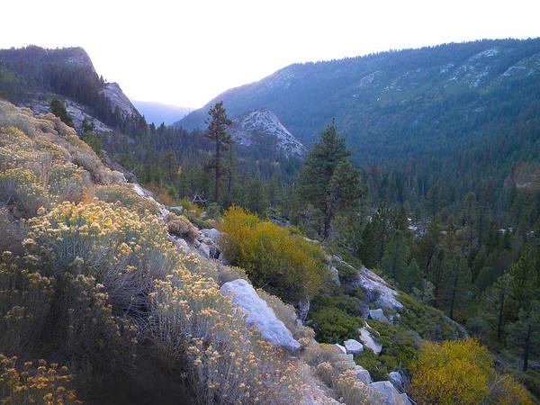 Photograph - Sierra Nevada Mountain Pass by Frank Wilson